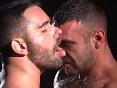 Gay Bears Piss Kissing