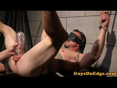 Blindfolded sub suspended for cocksucking