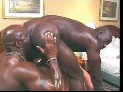 big black gay cocks on white boy, cocksucker, suck dick