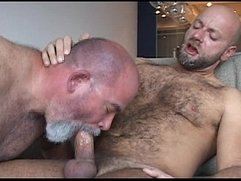 Nastydaddy - Daddy Bear And His Muscle Cub